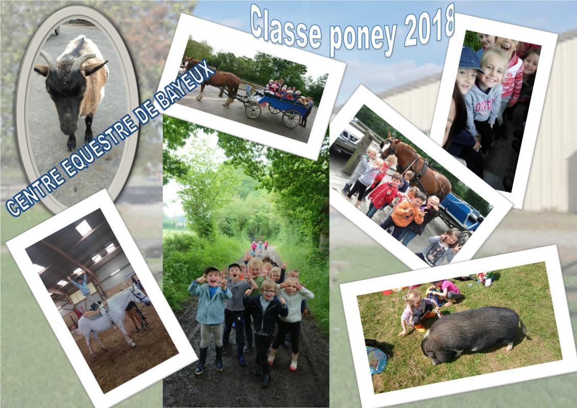 Classe poney 2019