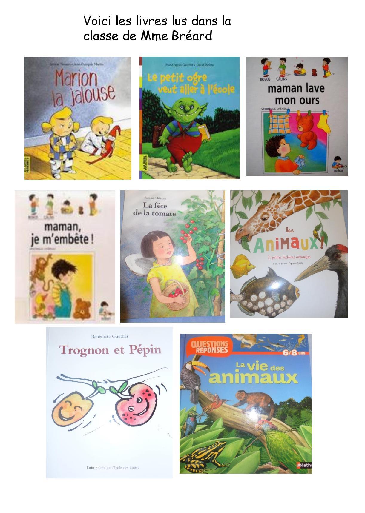 Journal de classe site internet page 9